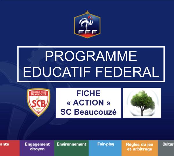 Programme Educatif Fédéral. Addictologie